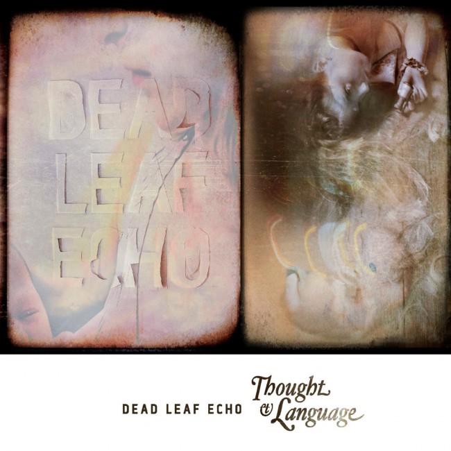 Dead Leaf Echo