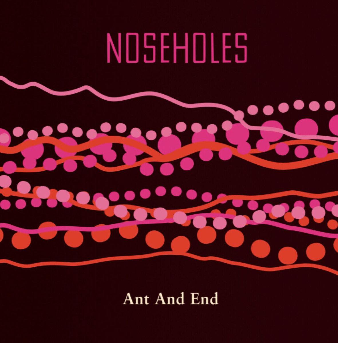 Noseholes